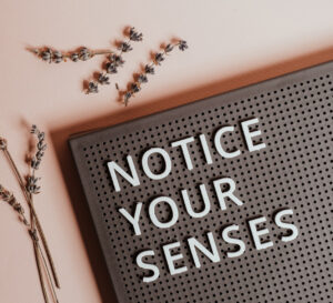 Wijsheid: notice your sensei